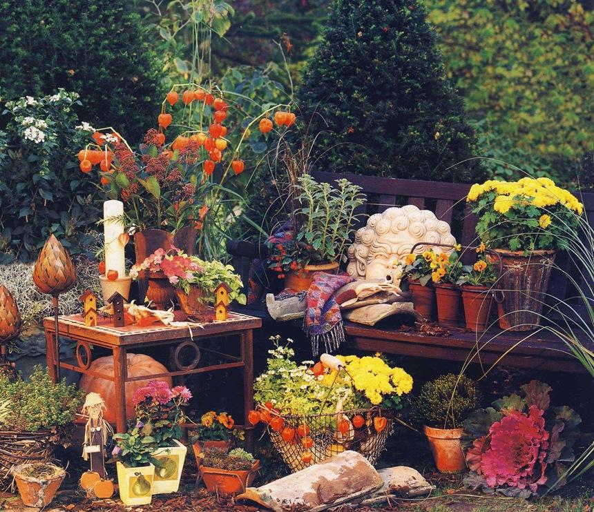 Сад осенью
